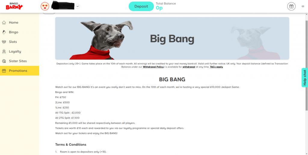 Individual Bingo Promotions Page